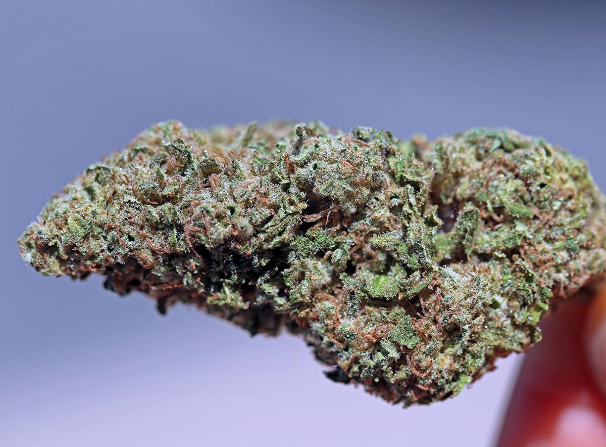 Cherry AK Bud