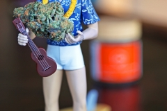 Aloha Elvis, I bring gifts