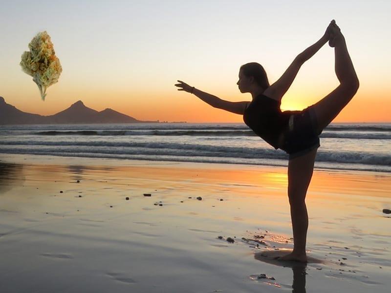 Autumn Brands, Wellness and Balance